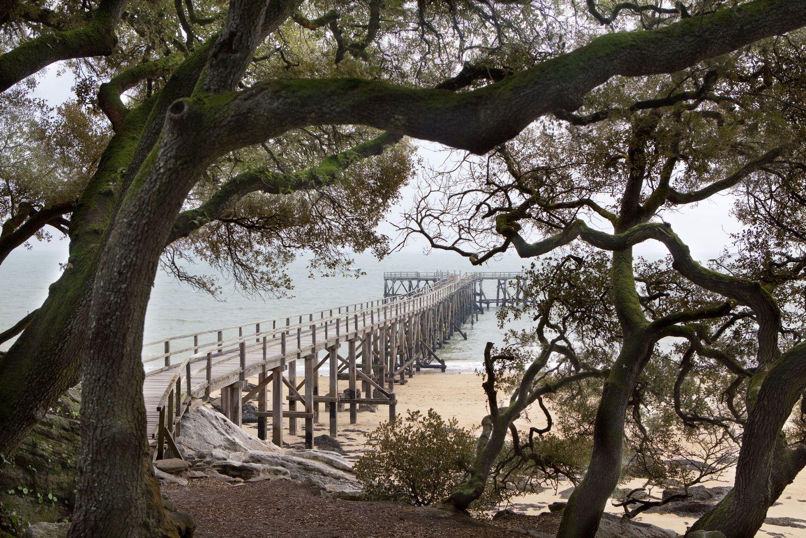 Le Bois de la Chaize La région de Noirmoutier HOTEL de charme Les Prateaux H u00f4tel Les  # Le Bois De La Chaize